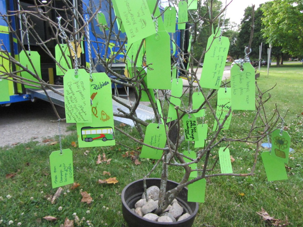 Green tags hanging on the LRTP wish tree branches.